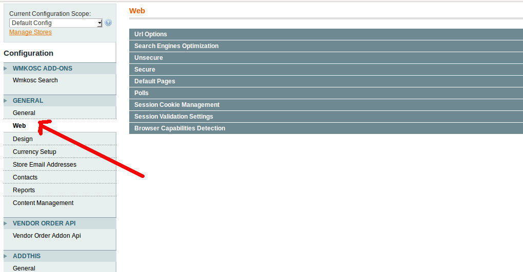 Magento Web options