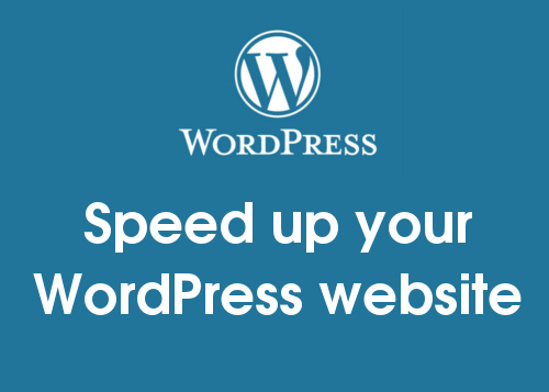 Best WordPress Plugin to Speed Up Website - SeoDennis